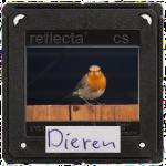 dia_Dieren