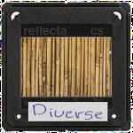 dia_Diverse